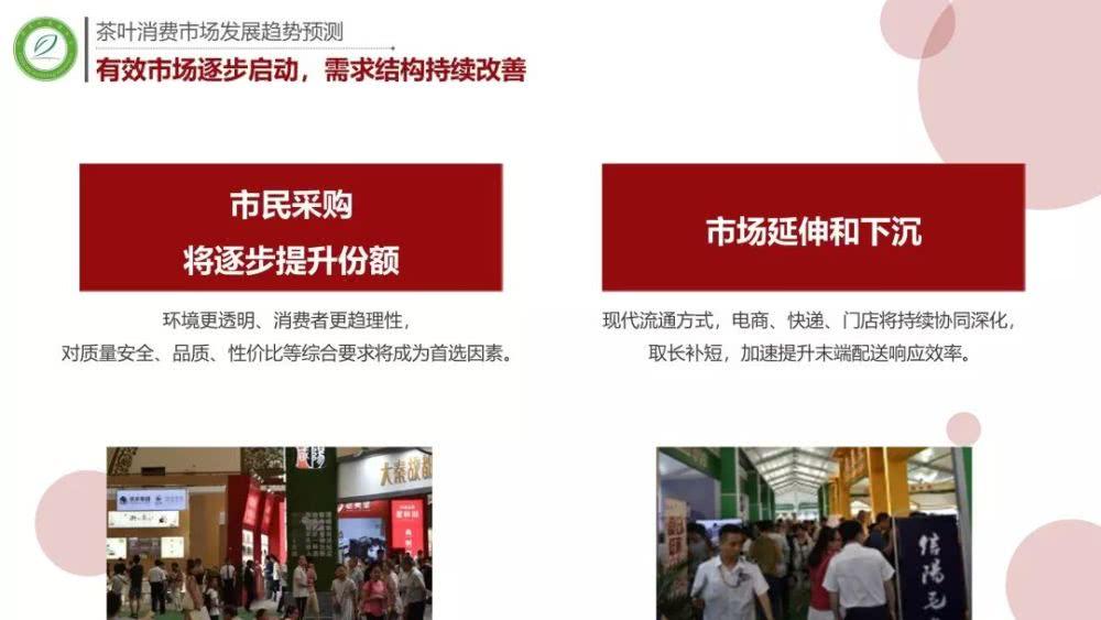 """019中国茶叶行业市场数据及发展趋势分析报告"""""""