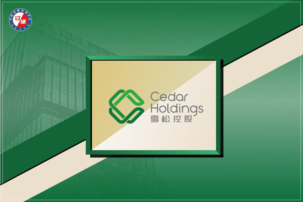 雪松控股品牌价值376亿元 中国品牌价值500强排名第190位